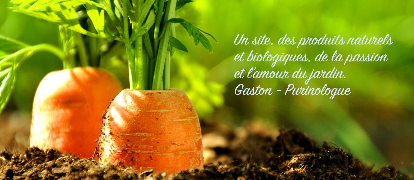Vente de purins d ortie pr le et consoude pour le jardin - Purin de prele ...